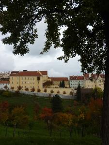Fall in a park in Mala Straná