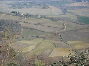 Looking north from Montalcino