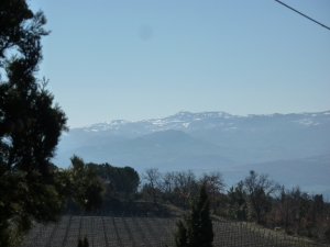 View from Poggio Antico winery