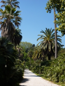 Viale delle Palme (Avenue of the Palms)