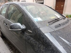 Talk about a bad weekend: sirocco grime AND a parking ticket!