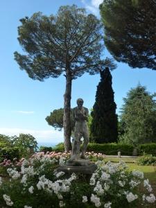 Villa Cimbrone rose garden - wrestler (he looks more like a boxer but whatever)